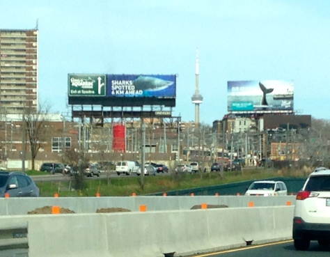 Aquarium Billboards by the Gardiner